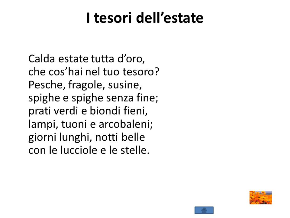 I tesori dell'estate