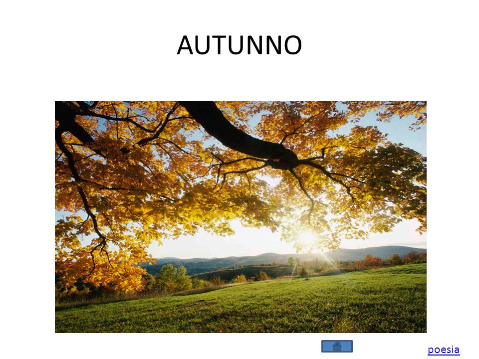 AUTUNNO poesia