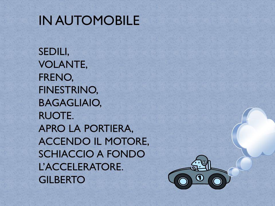 IN AUTOMOBILE SEDILI, VOLANTE, FRENO, FINESTRINO, BAGAGLIAIO, RUOTE.