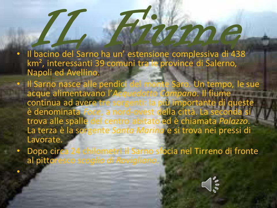 IL Fiume Il bacino del Sarno ha un' estensione complessiva di 438 km², interessanti 39 comuni tra le province di Salerno, Napoli ed Avellino.