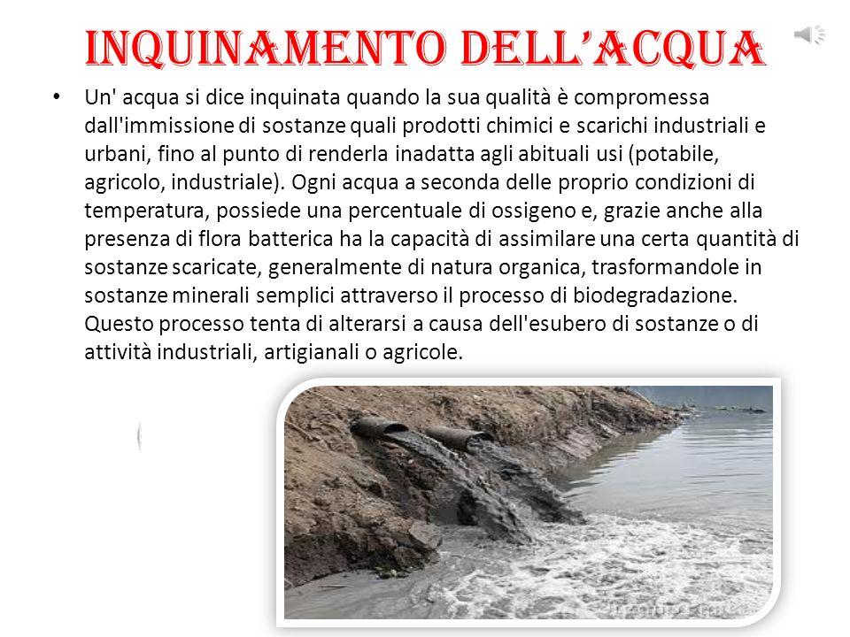 Inquinamento dell'acqua