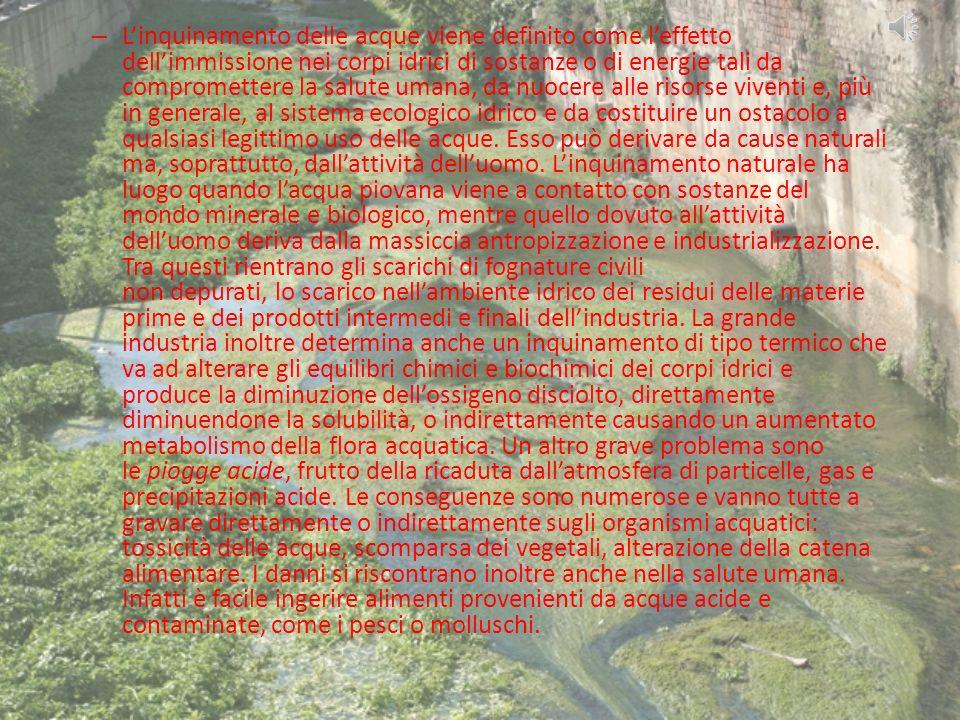L'inquinamento delle acque viene definito come l'effetto dell'immissione nei corpi idrici di sostanze o di energie tali da compromettere la salute umana, da nuocere alle risorse viventi e, più in generale, al sistema ecologico idrico e da costituire un ostacolo a qualsiasi legittimo uso delle acque.