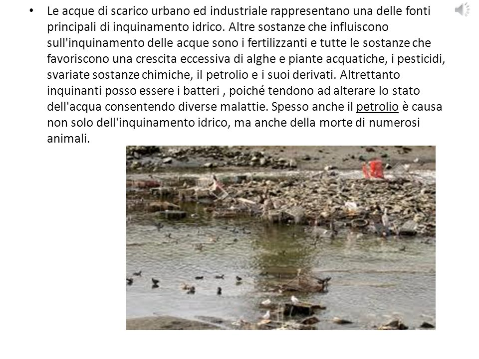 Le acque di scarico urbano ed industriale rappresentano una delle fonti principali di inquinamento idrico.