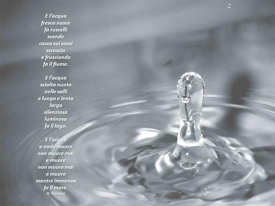 E l'acqua fresca nasce fa ruscelli scende casca sui sassi scroscia e frusciando fa il fiume. E l'acqua sciolta nuota nelle valli e lunga e lenta larga silenziosa luminosa fa il lago. E l'acqua a onde muore non muore mai e muore non muore mai e muore mentre immensa fa il mare.
