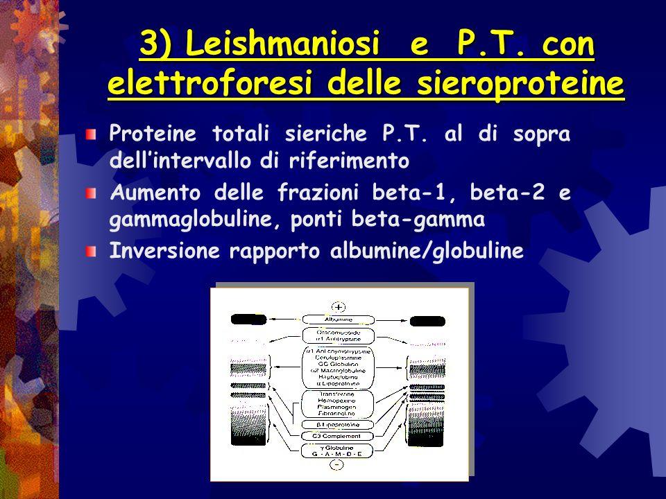 3) Leishmaniosi e P.T. con elettroforesi delle sieroproteine
