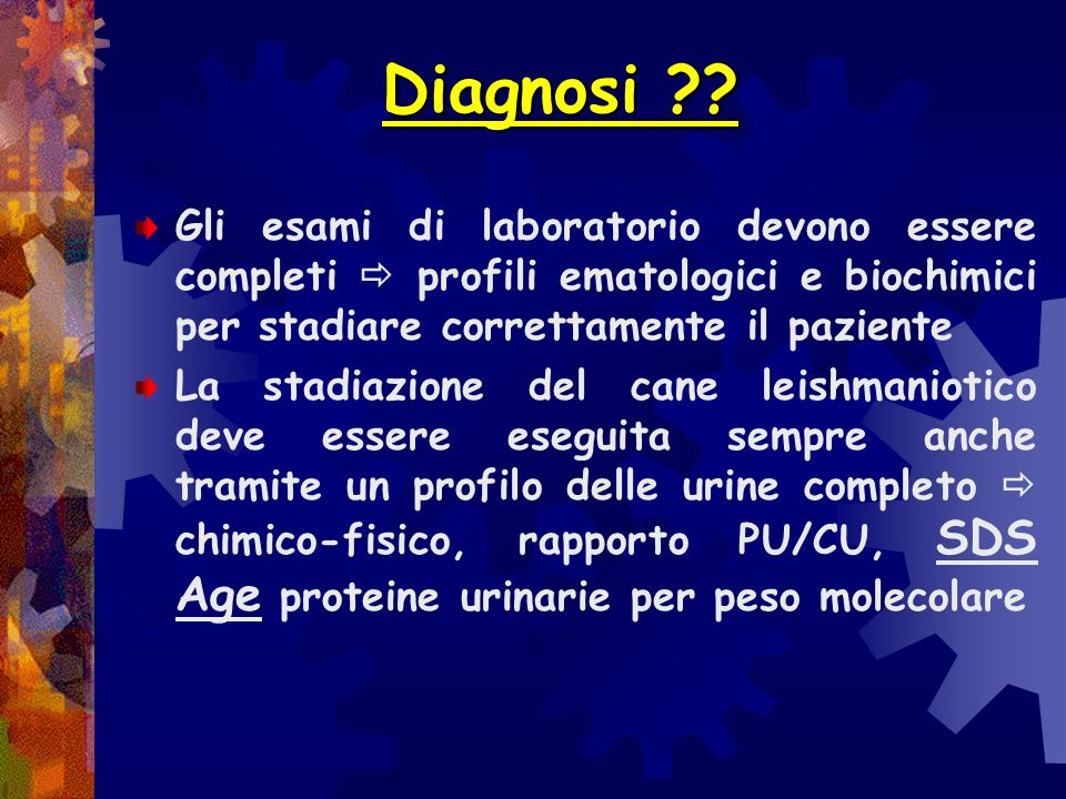Diagnosi Gli esami di laboratorio devono essere completi  profili ematologici e biochimici per stadiare correttamente il paziente.