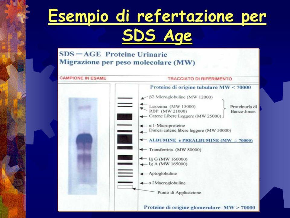 Esempio di refertazione per SDS Age