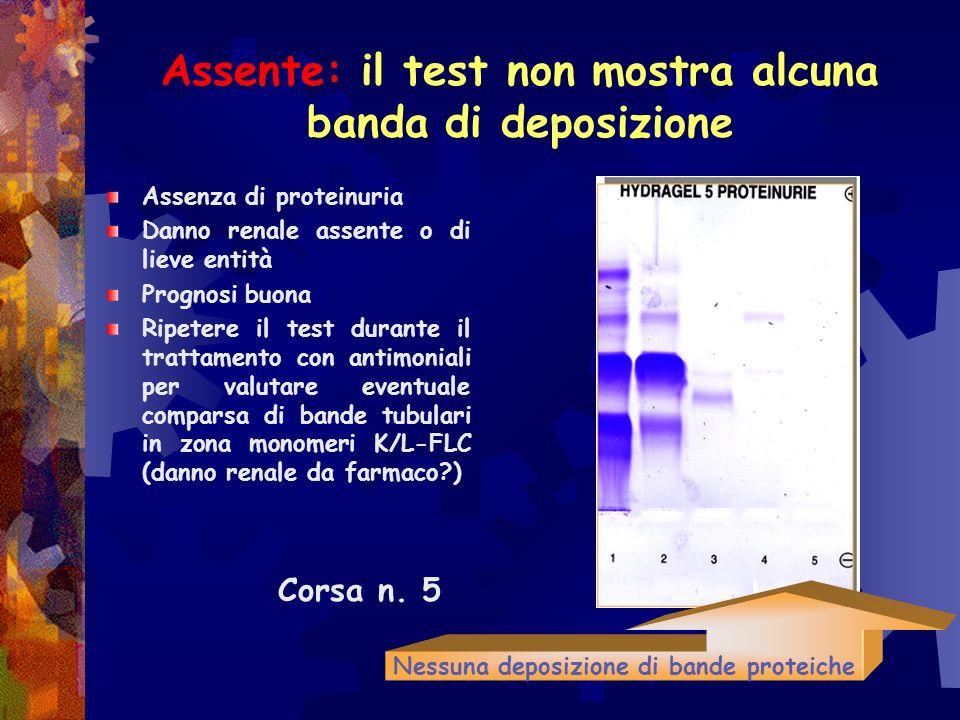 Assente: il test non mostra alcuna banda di deposizione