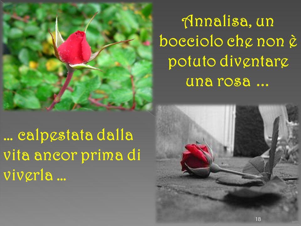 Annalisa, un bocciolo che non è potuto diventare una rosa …