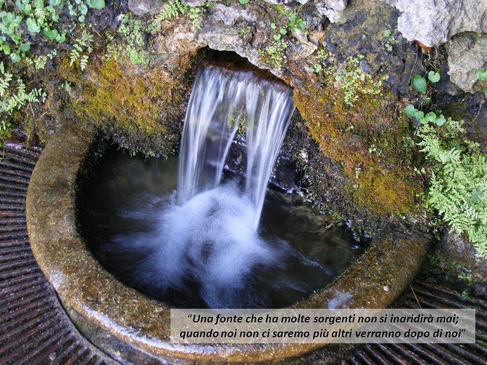 Una fonte che ha molte sorgenti non si inaridirà mai; quando noi non ci saremo più altri verranno dopo di noi