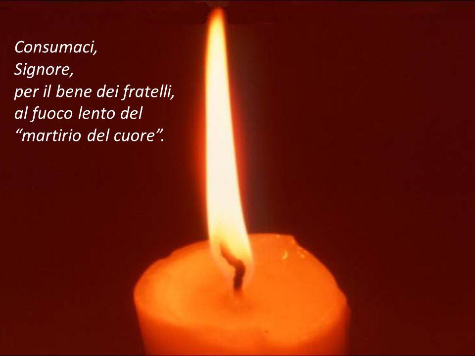 Consumaci, Signore, per il bene dei fratelli, al fuoco lento del martirio del cuore .