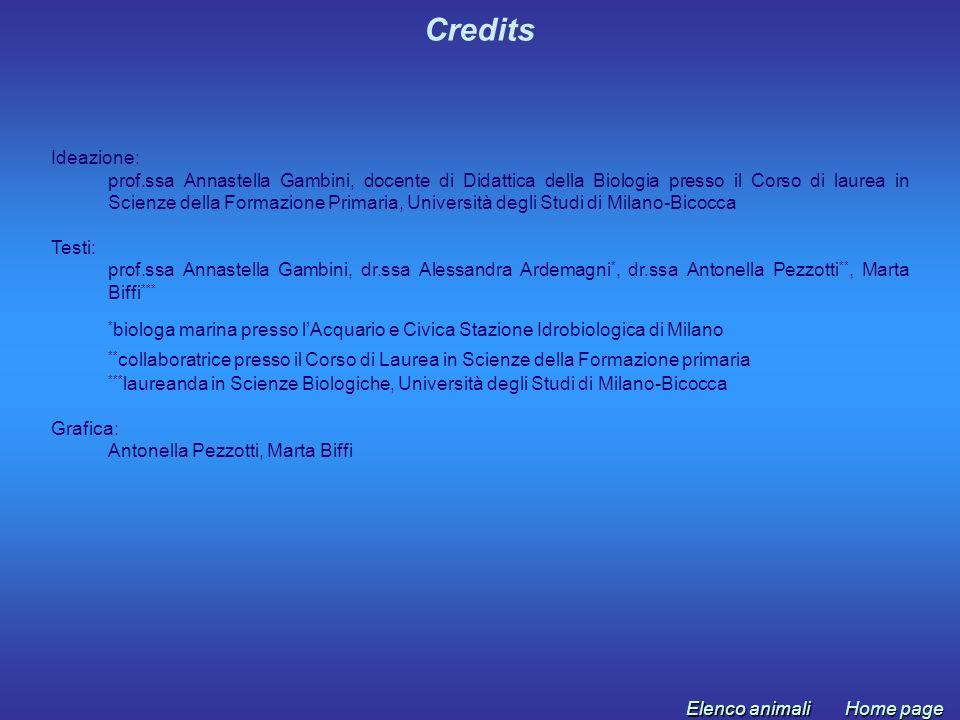 Credits Ideazione: