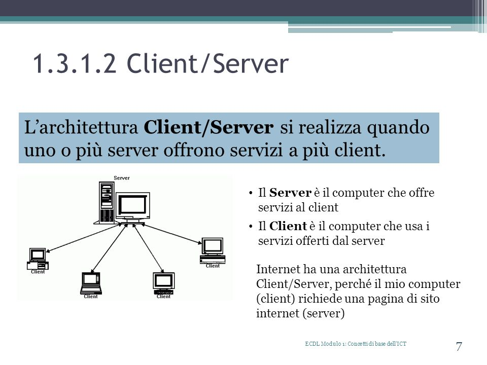 1.3.1.2 Client/Server WAN (Wide Area Network)