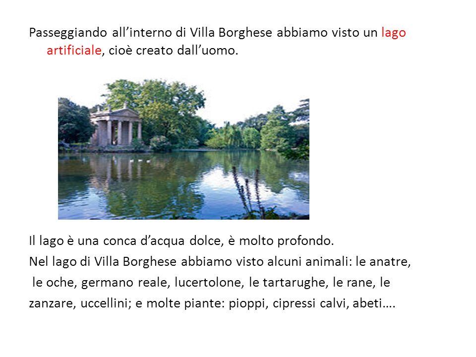Passeggiando all'interno di Villa Borghese abbiamo visto un lago artificiale, cioè creato dall'uomo.