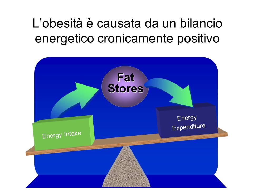 L'obesità è causata da un bilancio energetico cronicamente positivo