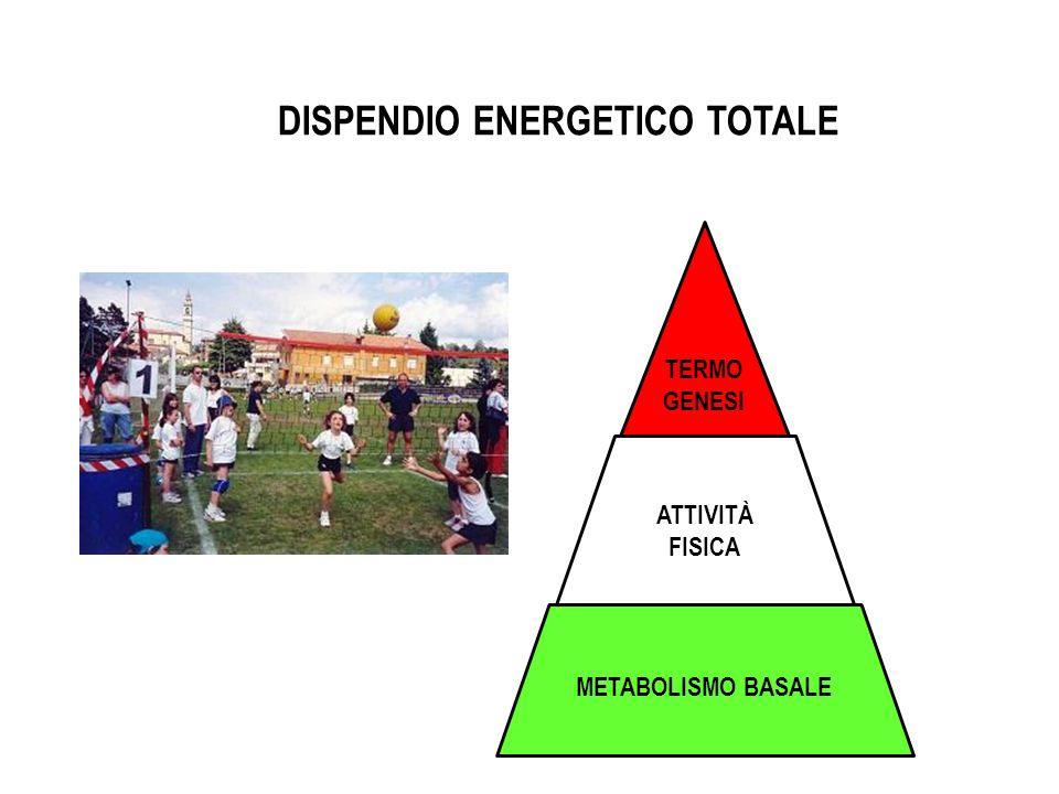 DISPENDIO ENERGETICO TOTALE