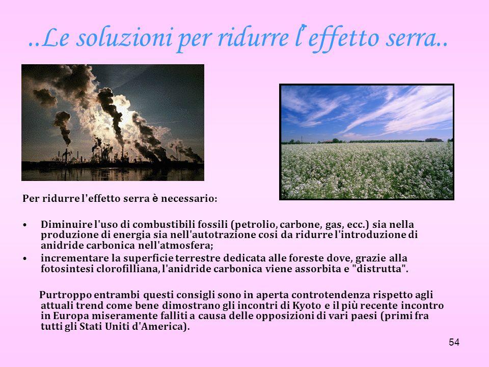 ..Le soluzioni per ridurre l'effetto serra..