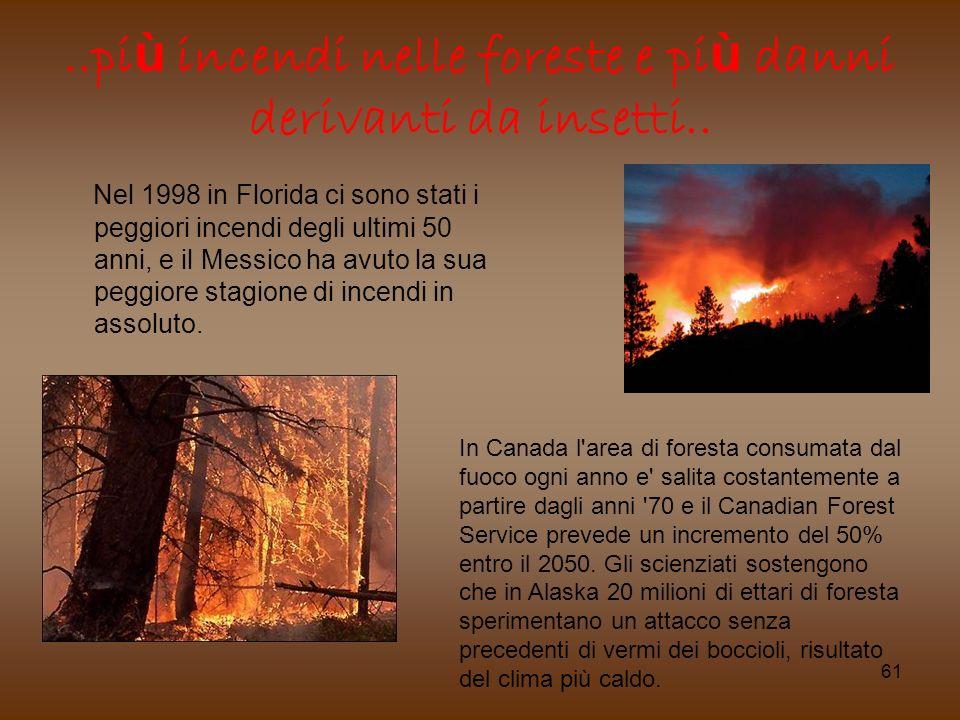 ..più incendi nelle foreste e più danni derivanti da insetti..