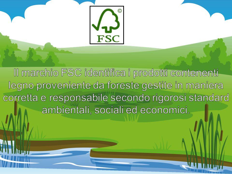 Il marchio FSC identifica i prodotti contenenti legno proveniente da foreste gestite in maniera corretta e responsabile secondo rigorosi standard ambientali, sociali ed economici.
