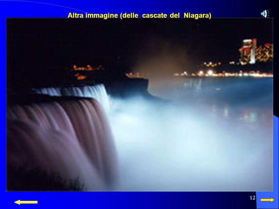 Altra immagine (delle cascate del Niagara)
