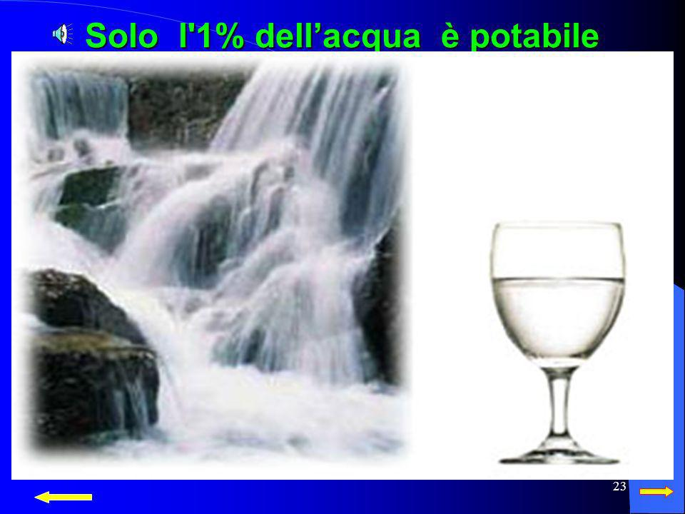 Solo l 1% dell'acqua è potabile