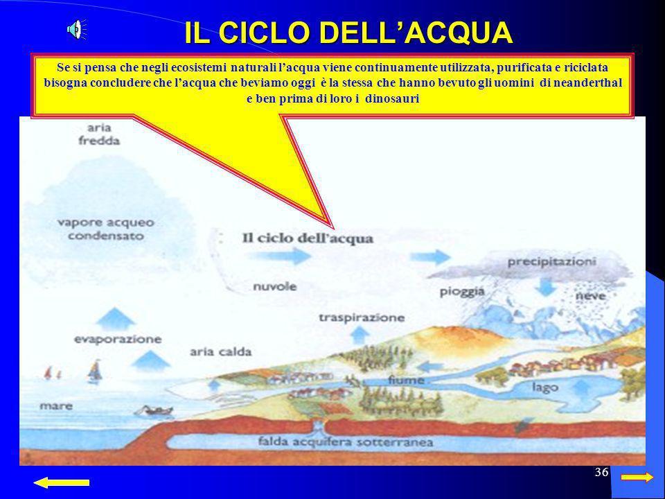 IL CICLO DELL'ACQUA Se si pensa che negli ecosistemi naturali l'acqua viene continuamente utilizzata, purificata e riciclata.