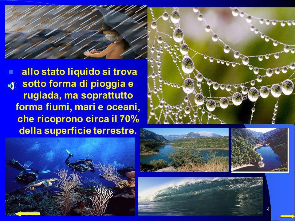 allo stato liquido si trova sotto forma di pioggia e rugiada, ma soprattutto forma fiumi, mari e oceani, che ricoprono circa il 70% della superficie terrestre.