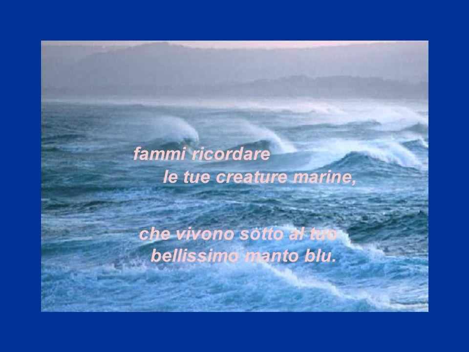 fammi ricordare le tue creature marine, che vivono sotto al tuo