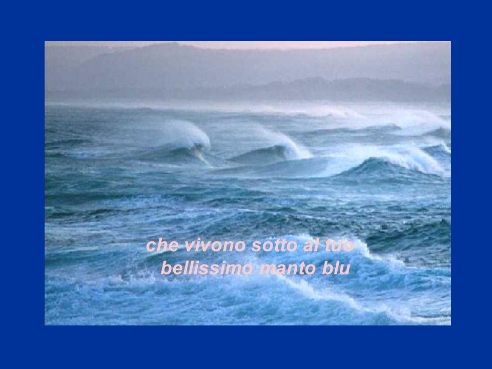 che vivono sotto al tuo bellissimo manto blu