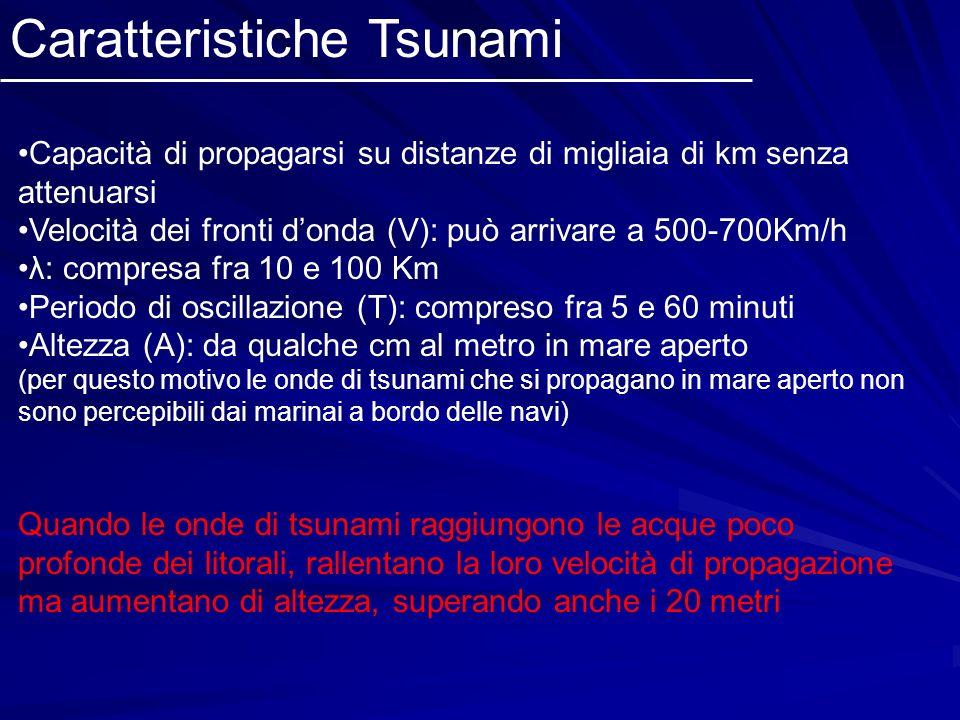 Caratteristiche Tsunami