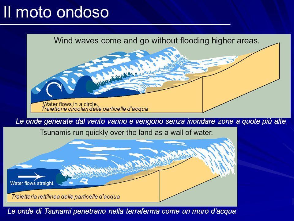 Il moto ondoso Traiettorie circolari delle particelle d'acqua. Le onde generate dal vento vanno e vengono senza inondare zone a quote più alte.