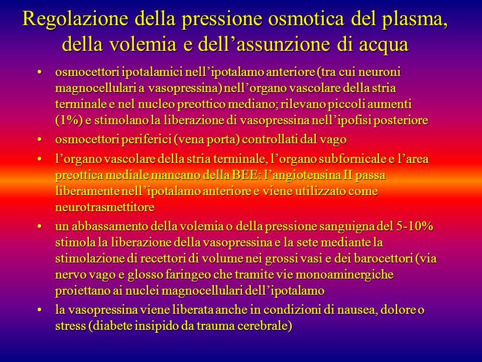 Regolazione della pressione osmotica del plasma, della volemia e dell'assunzione di acqua