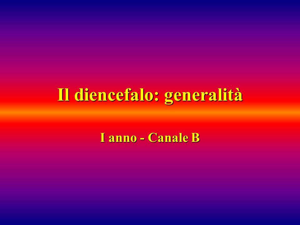 Il diencefalo: generalità
