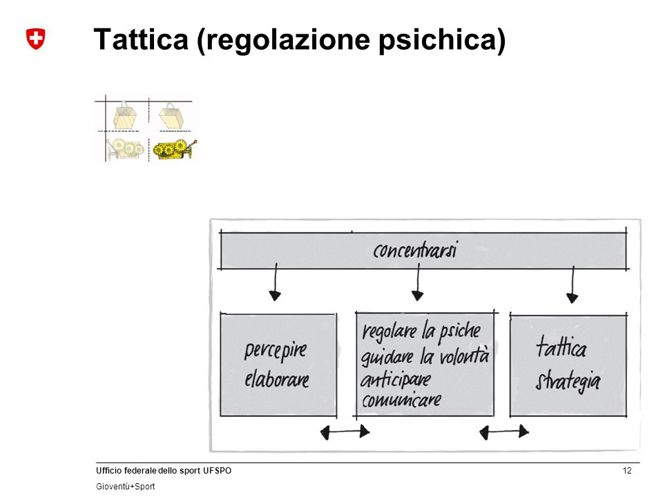 Tattica (regolazione psichica)