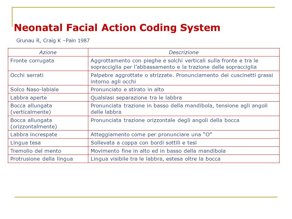 Neonatal Facial Action Coding System