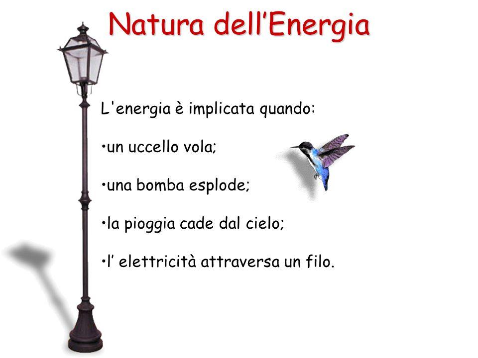 Natura dell'Energia L energia è implicata quando: un uccello vola;
