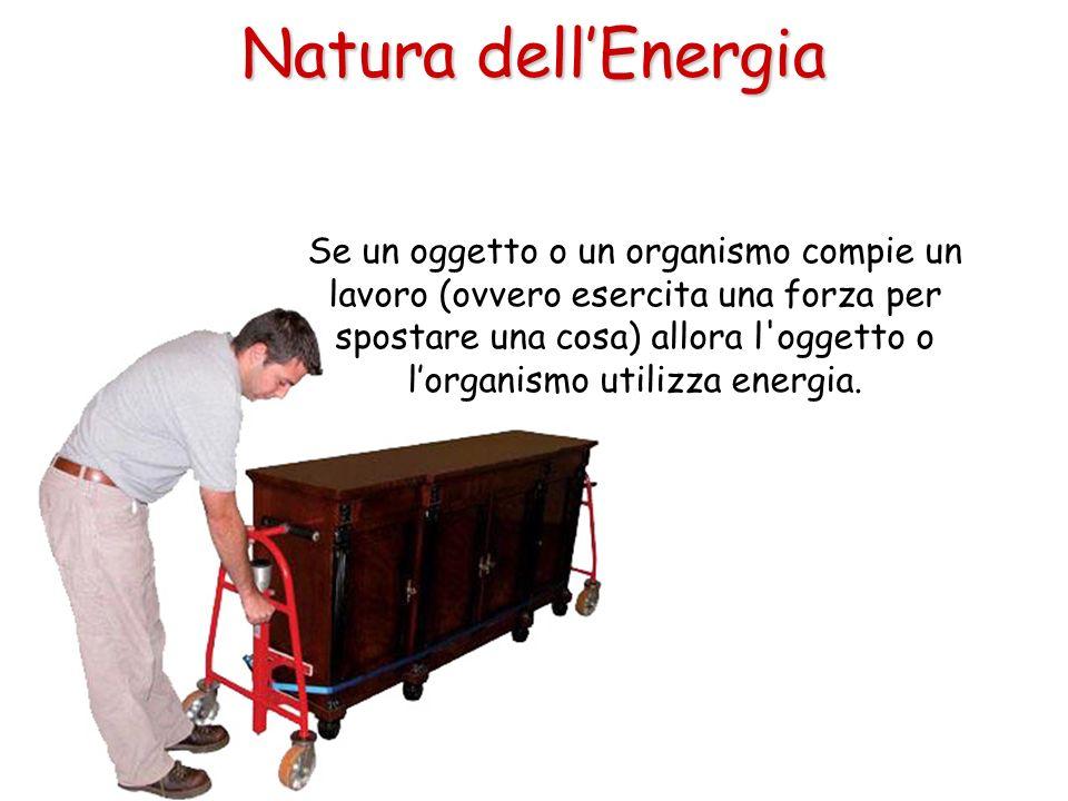 Natura dell'Energia