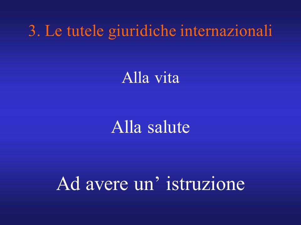 3. Le tutele giuridiche internazionali