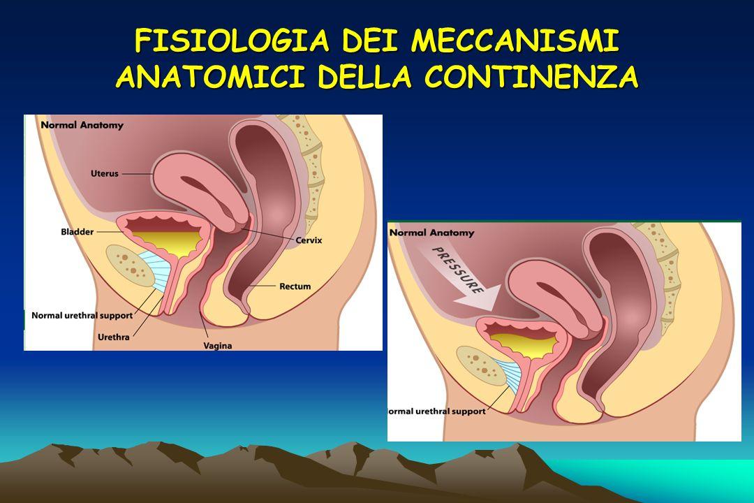 FISIOLOGIA DEI MECCANISMI ANATOMICI DELLA CONTINENZA