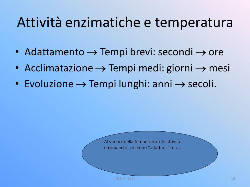 Attività enzimatiche e temperatura