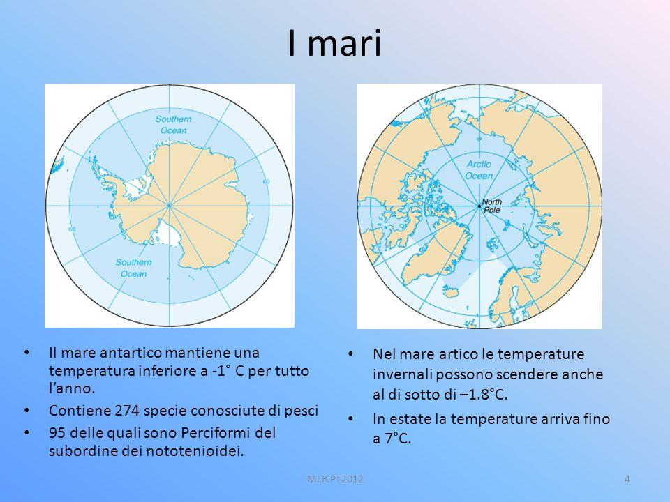 I mari Il mare antartico mantiene una temperatura inferiore a -1° C per tutto l'anno. Contiene 274 specie conosciute di pesci.