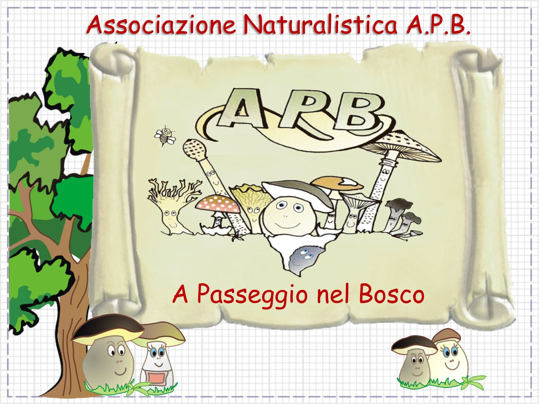 Associazione Naturalistica A.P.B.