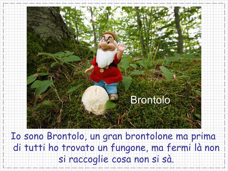 Brontolo Io sono Brontolo, un gran brontolone ma prima di tutti ho trovato un fungone, ma fermi là non si raccoglie cosa non si sà.