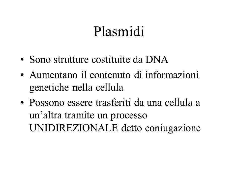 Plasmidi Sono strutture costituite da DNA