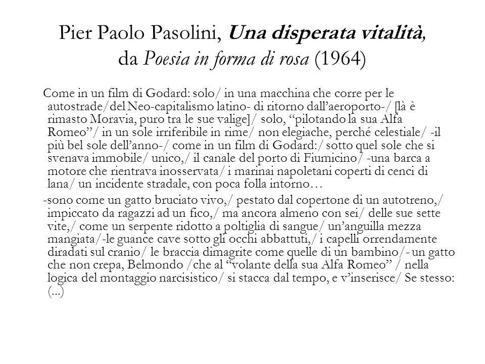 Pier Paolo Pasolini, Una disperata vitalità, da Poesia in forma di rosa (1964)