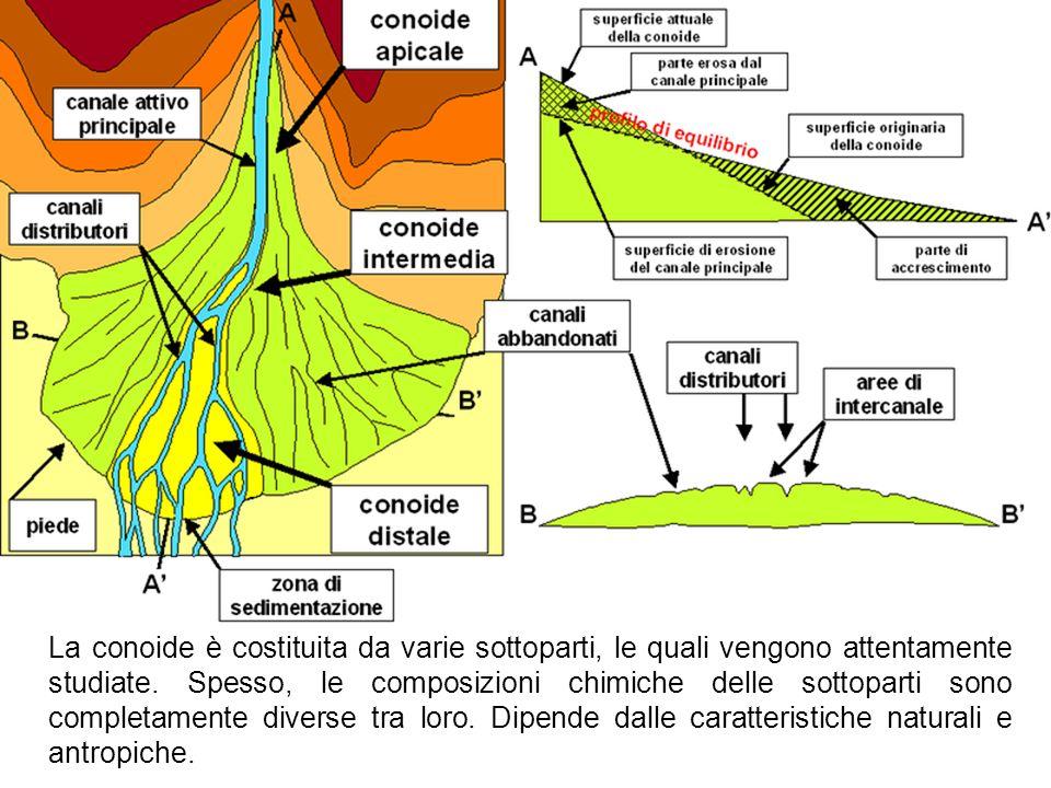 La conoide è costituita da varie sottoparti, le quali vengono attentamente studiate.