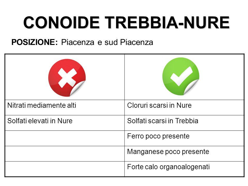 CONOIDE TREBBIA-NURE POSIZIONE: Piacenza e sud Piacenza
