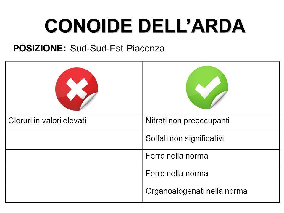 CONOIDE DELL'ARDA POSIZIONE: Sud-Sud-Est Piacenza