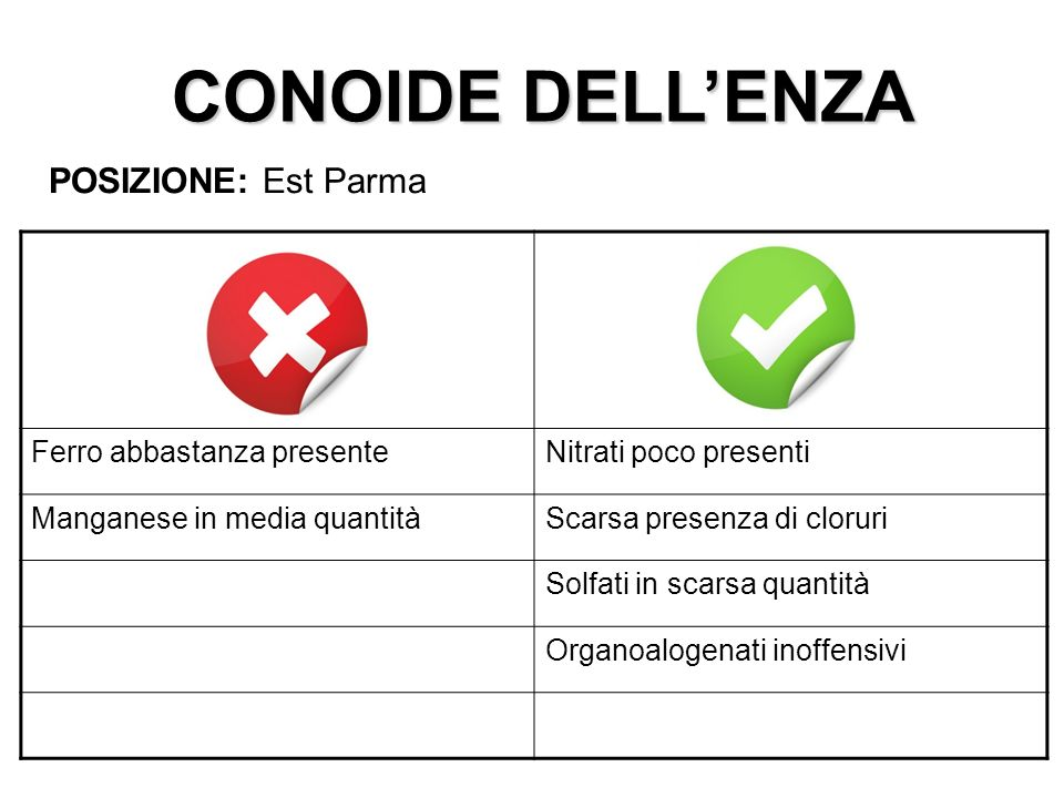 CONOIDE DELL'ENZA POSIZIONE: Est Parma Ferro abbastanza presente