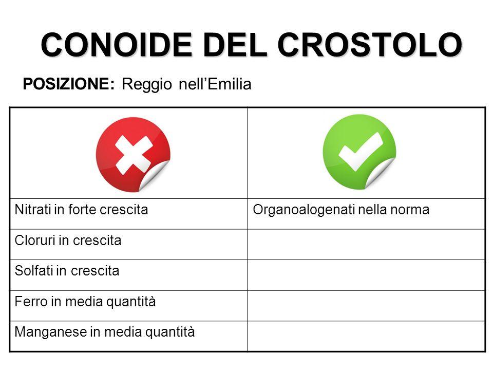CONOIDE DEL CROSTOLO POSIZIONE: Reggio nell'Emilia